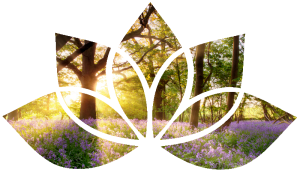 Lotus flower shape with sun shining through trees onto bluebell wood