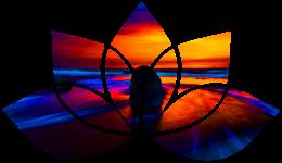Lotus flower shape with sunrise on beach